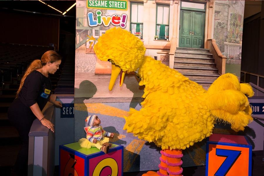 Big Bird Meet & Greet